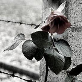 """Docuweb """"Oltre il muro"""" – 25 anni dalla caduta del Muro di Berlino"""